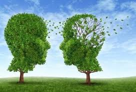 Tips Mencegah Alzheimer dengan Mengonsumsi Teh Hijau