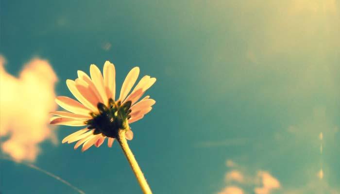Lima Tips Jadi Istri Teladan dari Ummul Mukminin Khadijah